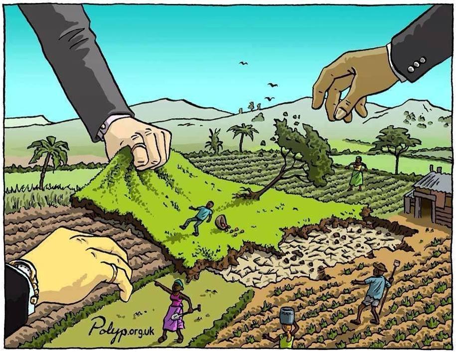 Ley nacional utópica de reparticion de tierras habitables