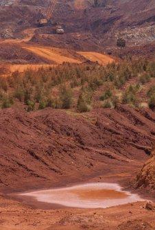Así se ve de cerca: en primer plano la capa de tierra ya explotada, en medio los pinos reforestados y en el fondo sigue la explotación con maquinarias pesadas.